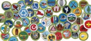merit-badges-v2